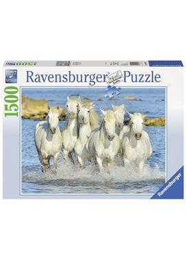 Puzzle 1500 paseo por la orilla - 26916285