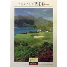 Puzzle 1500 evasion