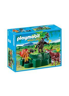 Gorilas y okapis con camara - 30005415