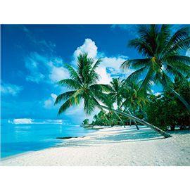 Puzzle 1000 pz playa tropical - 26915285