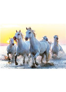 Puzzle 1000 caballos blancos al atardecer - 04017105
