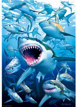 Puzzle 500 tiburones - 04017085