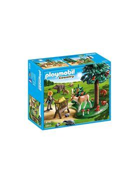 Animales del bosque - 30006815