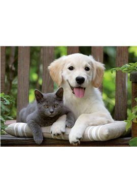 Puzzle 500 perro y gato - 26914234