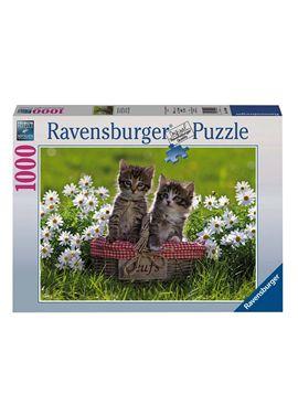 Puzzle 1000 gatos - 26919480